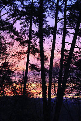 Photograph - Sunrise And Silhouetted Trees by Melinda Fawver