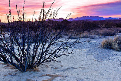 Photograph - Sunrise At Big Bend by Ben Graham