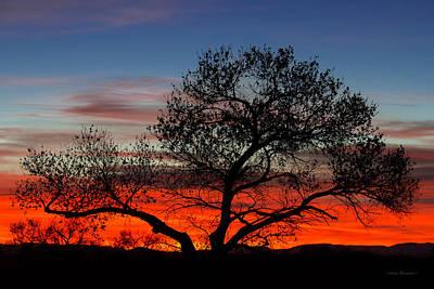 Photograph - Sunrise At Bosque Del Apache by Avian Resources