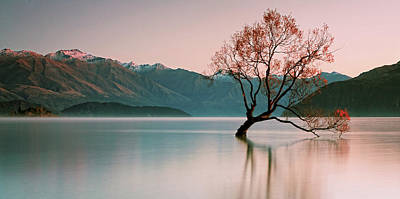 Sunrise At Lake Wanaka Art Print by Steve Daggar Photography