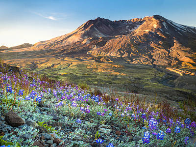 Sunrise At Mount St. Helens Art Print