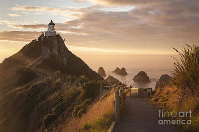 Photograph - Sunrise At Nugget Point Otago New Zealand by Colin and Linda McKie