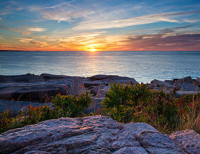 Jordan Photograph - Sunrise At Otter Cliffs by Darylann Leonard Photography