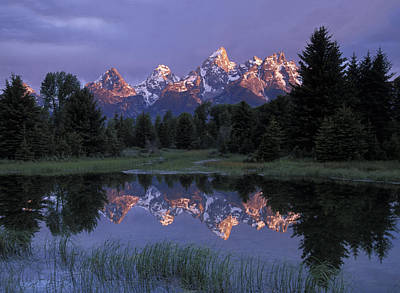 Photograph - Sunrise At Schwabacher Landing by Jim Dollar