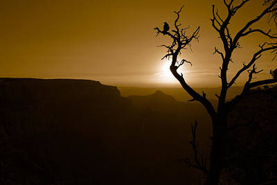 Photograph - Sunrise At The Grand Canyon by Daniel Woodrum