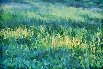 Painting - Sunrise At The Green Meadow by David Letts