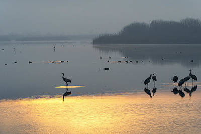 Sunrise Over The Hula Valley Israel 1 Art Print