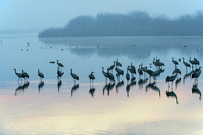 Photograph - Sunrise Over The Hula Valley Israel 5 by Dubi Roman