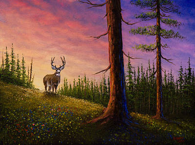 Sunrise Buck Art Print by C Steele