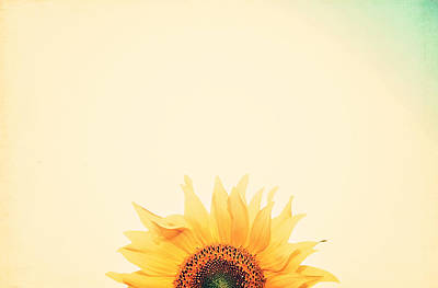 Sunflowers Photograph - Sunrise by Carrie Ann Grippo-Pike