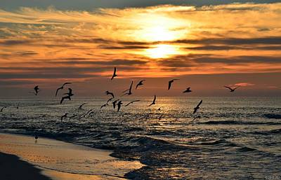 Photograph - Sunrise Colors Over Navarre Beach With Flock Of Seagulls by Jeff at JSJ Photography