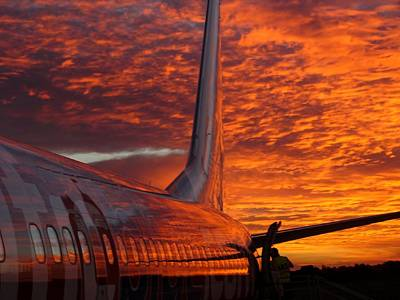Photograph - Sunrise Flight by David Rich
