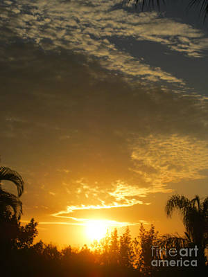 Photograph - Sunrise. Florida by Oksana Semenchenko