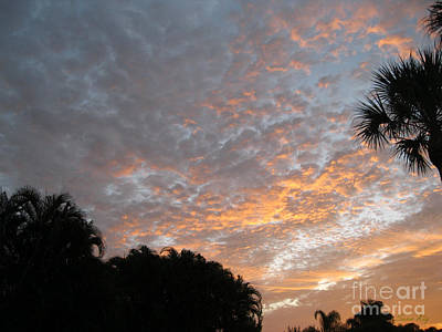 Photograph - Sunrise. Fort Myers by Oksana Semenchenko