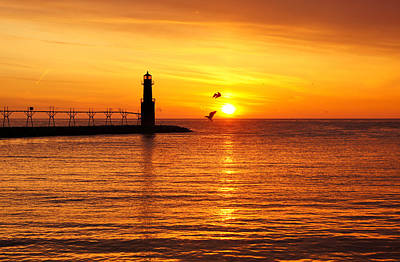 Photograph - Sunrise Frolic by Bill Pevlor