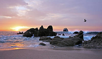Jurassic Photograph - Sunrise In Cabo San Lucas by Marcia Colelli
