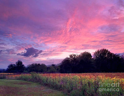 Sunrise In The South Art Print by T Lowry Wilson