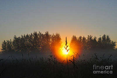 Photograph - Sunrise by Jack Moskovita