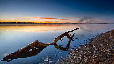 Sunrise Log Lake Art Print by Berkehaus Photography