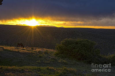 Sunrise Mesa Verde Art Print by Keith Ducker