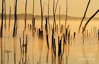 Sunrise Mist Art Print