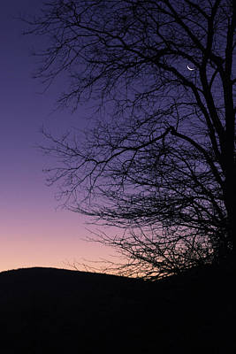 Photograph - Sunrise Moon by Bonnie Leigh Delar