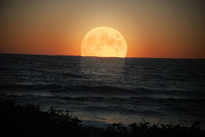 Photograph - Sunrise Moon by Tammy Collins