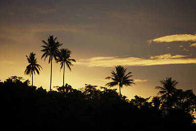 Photograph - Sunrise Near Foli Village On Halmahera by Tim Laman