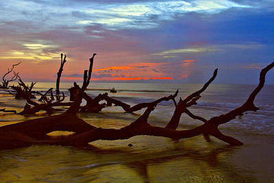 Photograph - Sunrise On Bulls Island by Bill Barber