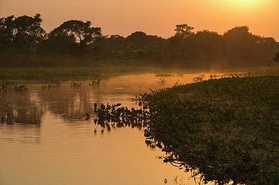 Mato Photograph - Sunrise On Cuiaba River, Northern by Pete Oxford