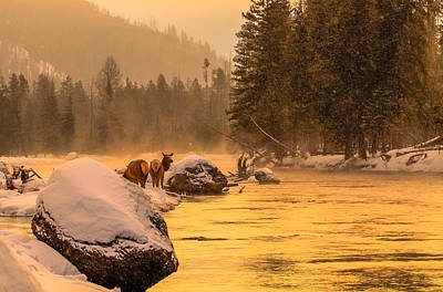 Art Print featuring the photograph Sunrise On Madison River by Yeates Photography