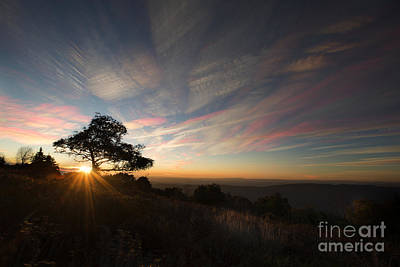 Photograph - Sunrise On Roaring Plains At Dolly Sods by Dan Friend