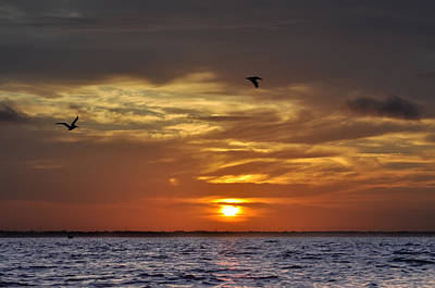 Sunrise On Tampa Bay Art Print by Bill Cannon