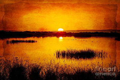 Photograph - Sunrise On The Pond by Pam Vick