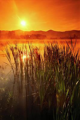 Sunrise Over A Misty Pond Art Print by Richard Nowitz