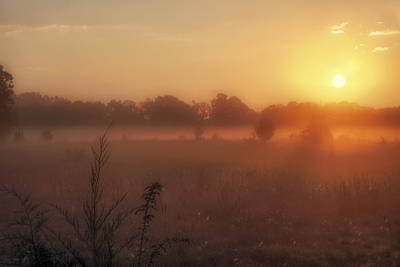 Photograph - Sunrise Over Foggy Pastures by Jason Politte