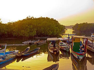 Sunrise Over Gambian Creek Art Print