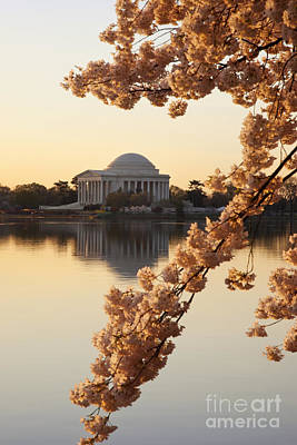 Photograph - Sunrise Over Jefferson Memorial by Brian Jannsen