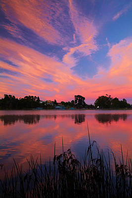 Sunrise Over Lake Rotoroa, Hamilton Art Print by David Wall