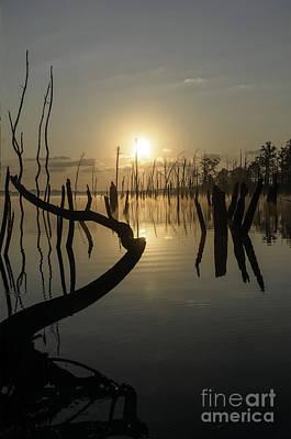 Sunrise Over Manasquan Reservoir II Art Print