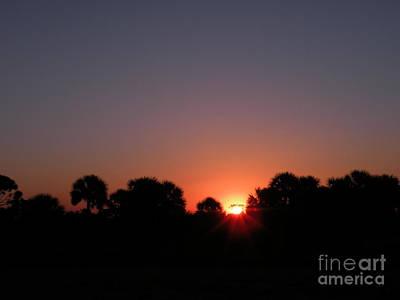 Photograph - Sunrise Over St Joseph Bay by Lora Duguay