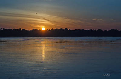Photograph - Sunrise Over The Amazon River by Allen Sheffield