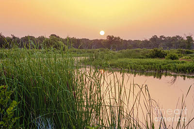 Photograph - Sunrise Over The Marsh by David Cutts