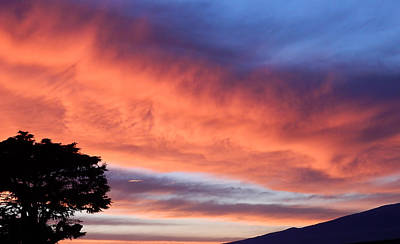 Photograph - Sunrise by Pamela Walton