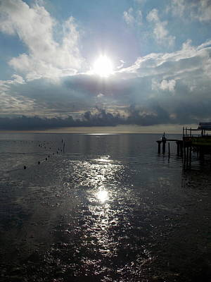 Photograph - Sunrise Reflection Cedar Key Beach by Sheri McLeroy