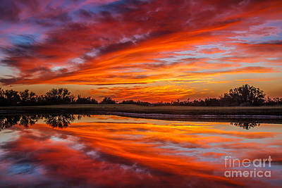 Yuma Photograph - Sunrise Reflections by Robert Bales