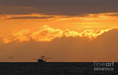 Photograph - Sunrise Shrimpin' by Kevin McCarthy