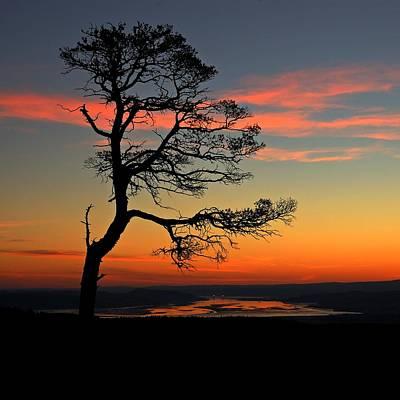 Photograph - Sunrise Silhouette by Gavin Macrae