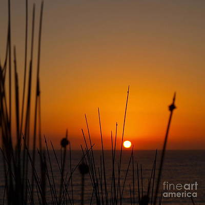 Art Print featuring the photograph Sunrise Silhouette by Trena Mara