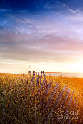 Fruits And Vegetables Still Life - Sunrise splashed dunes by Jo Ann Snover